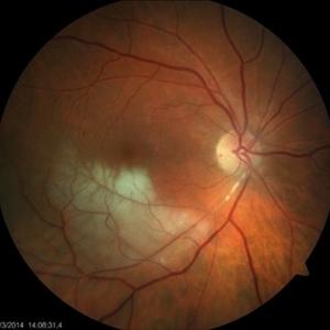 Discover images - Retina Image Bank
